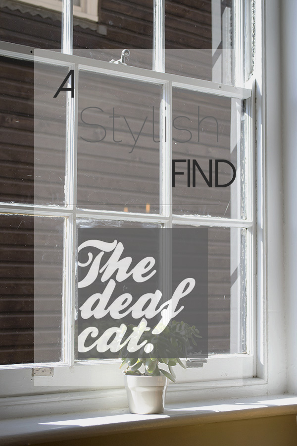 The Deaf Cat Coffee House, Rochester