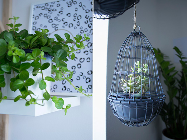 Hanging wire cloche planters in my minimal workspace home office