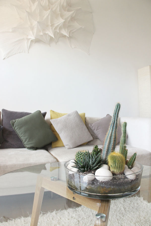 urban-jungle-styling-and-living-with-plants-cacti-ilaria-fatone