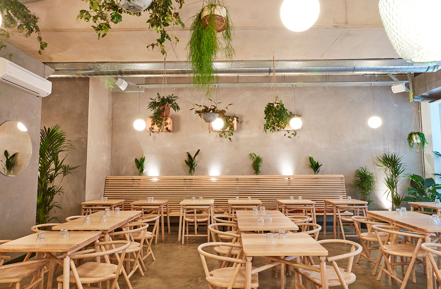 London restaurant Amber in Aldgate East, contemporary modern design, ash dining furniture designed by Charles Dedman, bare plaster walls, hanging plants