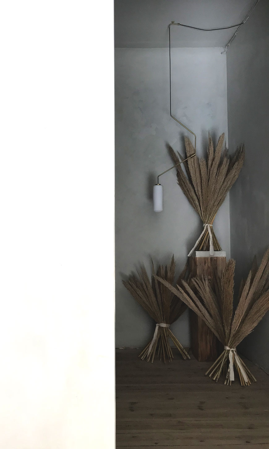 A stack of grasses styled against grey lime washed walls at 3daysofdesign