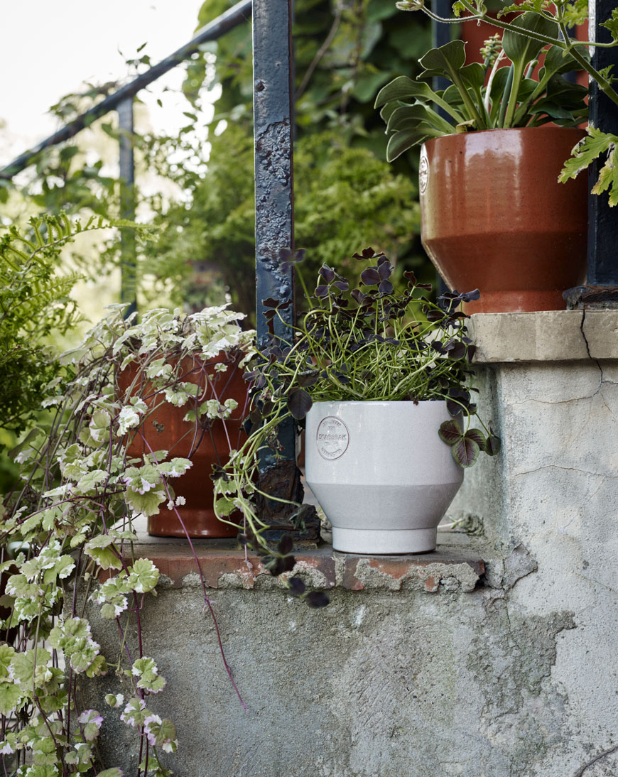 A group of three terracotta garden pots on a set of stairs with trailing plants.