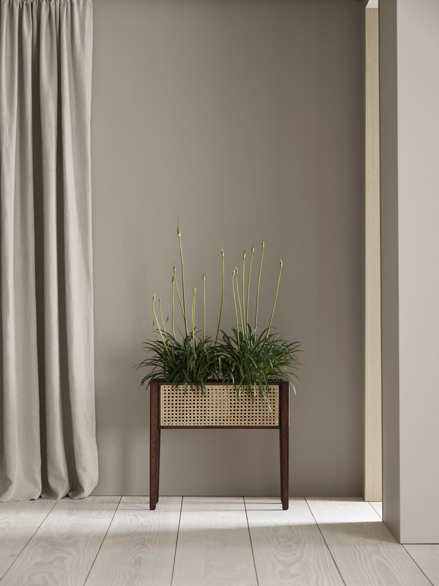 A timeless rattan and dark wood planter filled with Agapanthus in a soft beige Japanordic hallway.