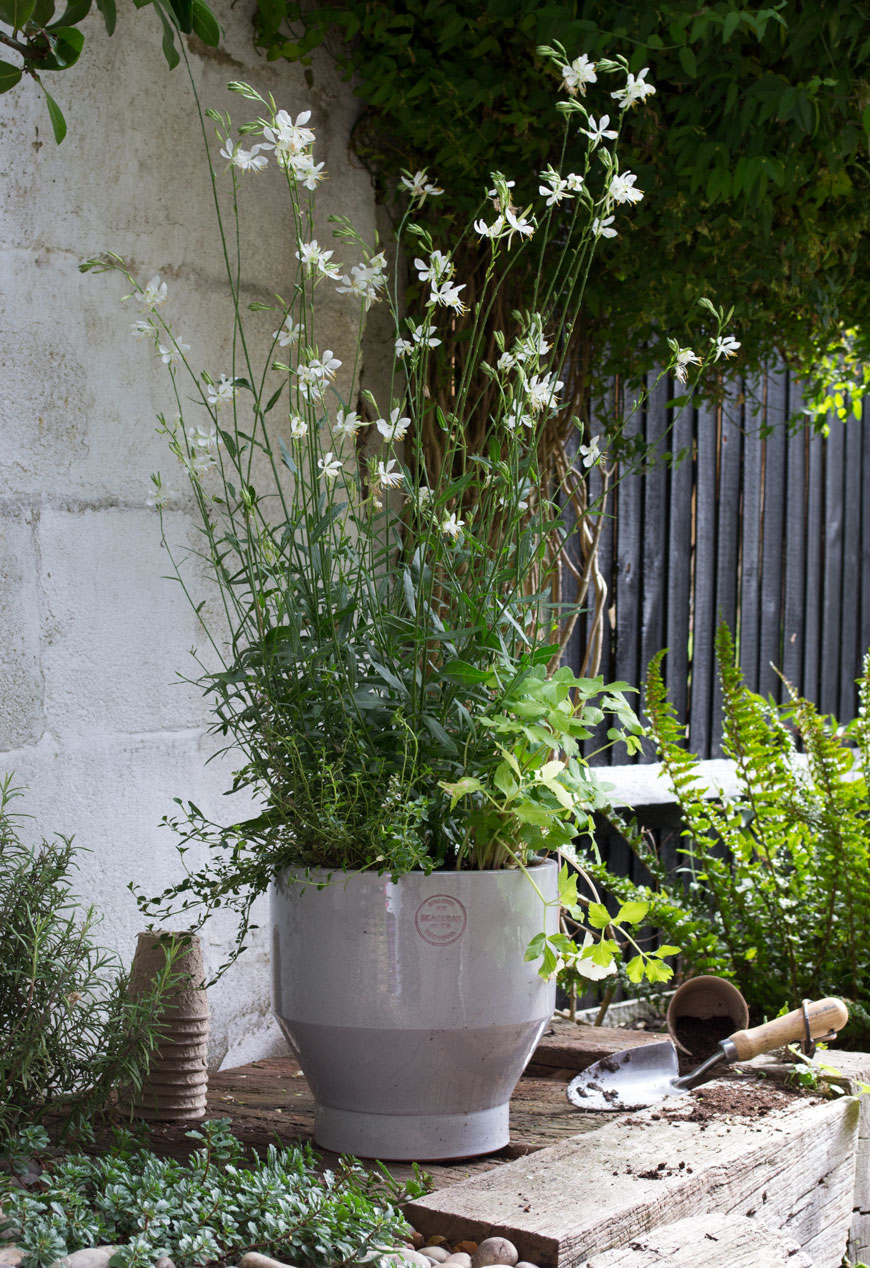 Mixing herbs into potted flowers shows how to make the garden feel like an extension of your home.