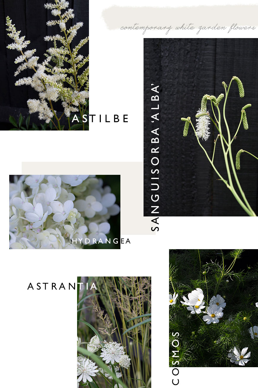 5 white flowers for a contemporary white garden.