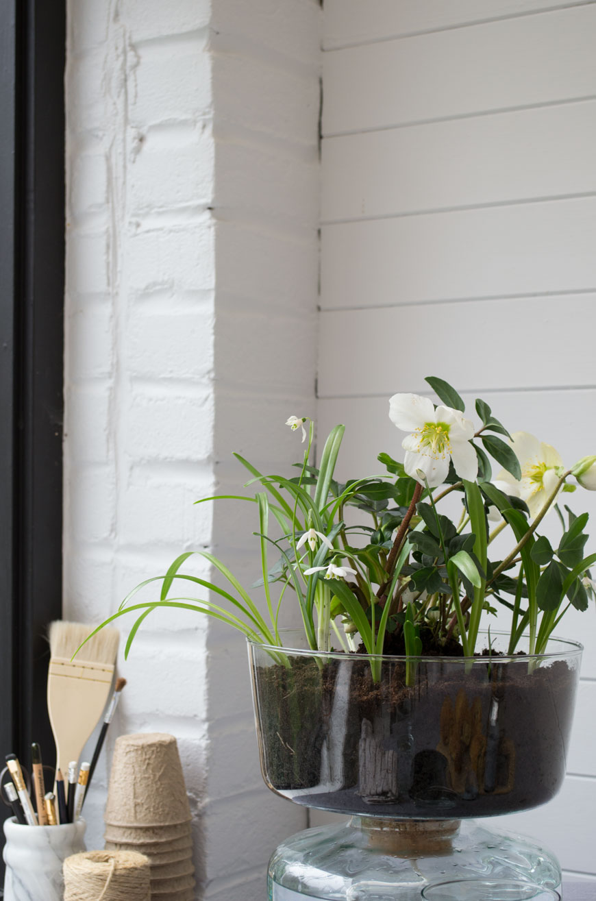White Hellebores and snowdrops bringing spring to a white Scandinavian sunroom, planted in an LSA Canopy collection planter.